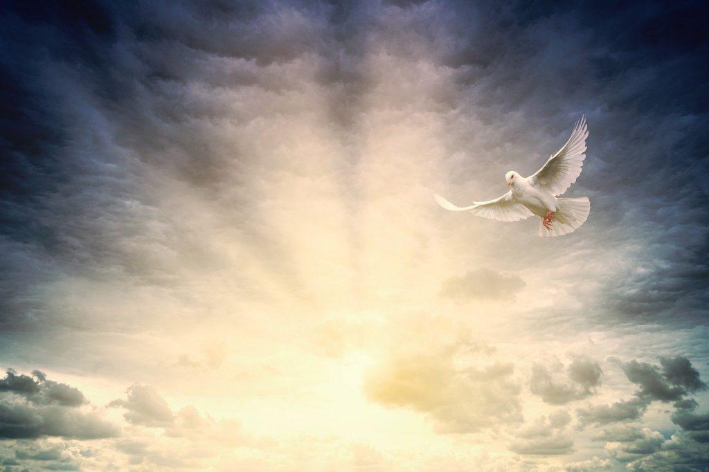 light, peace, hope